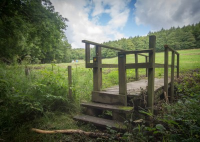 Sheffield Woodland Style