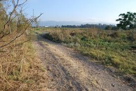 Sand road path